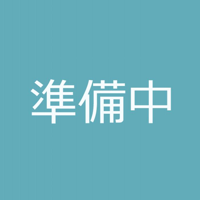 直流電流計(可動コイル形)